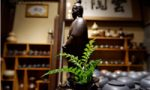柴烧艺术和茶艺插花禅与艺的完美邂逅